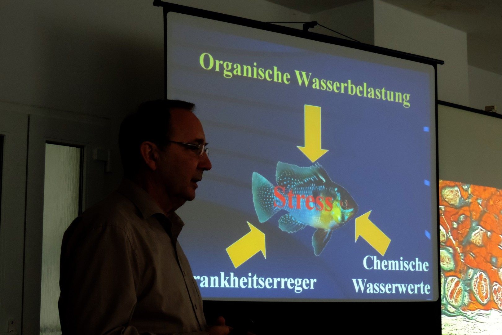 Dieter Untergasser  während seines Vortrages. Foto Jürgen Koppa
