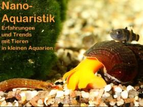 vortrag-nano-aquaristik