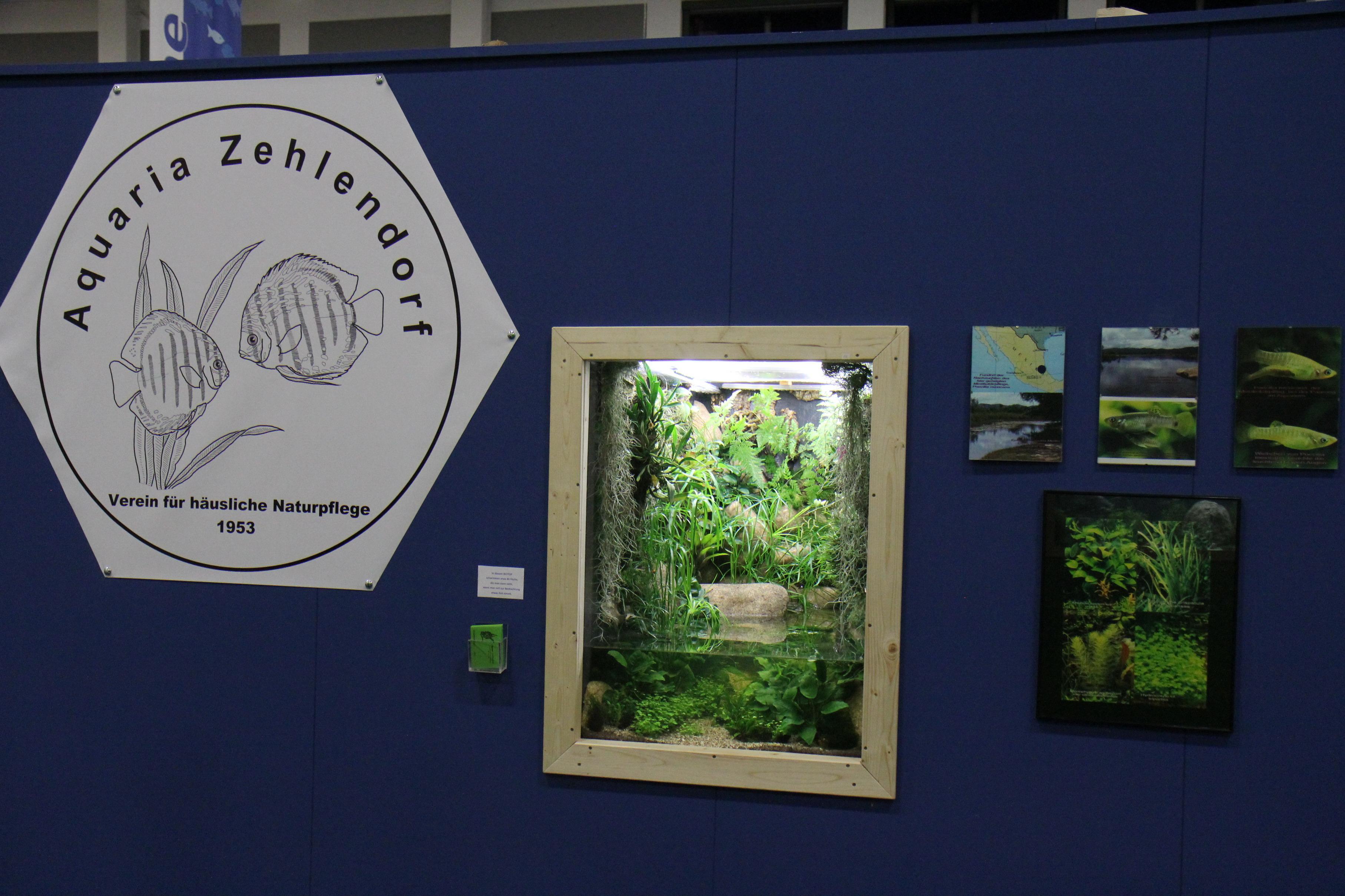 igw2013-aquaria-zehlendorf